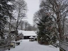 Ein bißchen Winter 🐧 Un po d'inverno