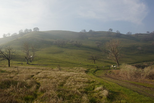 2017-01-31 Contra Loma Regional Park - Take 5 [#4]