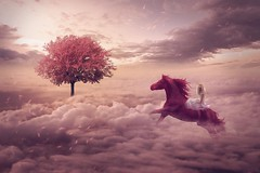 The Princess and the Horse (RoCafe on/off) Tags: manipulation photoshop digital fantasy art surrealism conceptual story tale whimsycal princess girl horse tree clouds sky