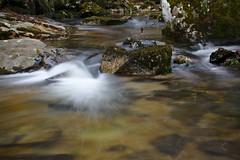 Eaux douces Tarn (Marc ALMECIJA) Tags: eau water wasser river rivère tarn long pose exposure nature