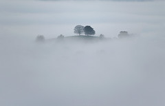 Emergence - Explored 27/2/17 (Sarah_Brooks) Tags: fog mist trees inversion somerset westcountry foggy misty hill autumn cloud emerge