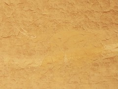 Chad Tibesti NE Elephants (ursulazrich) Tags: tschad ciad tchad chad tibesti sahara desert rockart felsbilder elephant elefant ivory elfenbein elephantidae elefanti elefanten elephants fauna