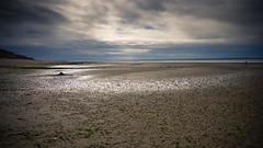 Die große Weite (Lens Daemmi) Tags: beach strand deutschland tide low northsea nordsee weite mudflats emptiness schleswigholstein ebb föhr ebbe wattenmeer leere wideness utersum