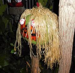 Le Grand Bal des Citrouilles (anng48) Tags: canada halloween quebec montreal pumpkins botanicalgarden qc citrouilles jardinbotanique greatpumpkinball espacepourlavie legrandbaldescitrouilles