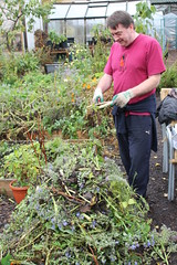 Nov_allotment (13)