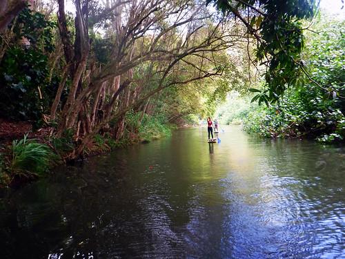 2015 Kauai Paddle Adventure  (133)