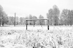 A morning walk before the commute (andrey.senov) Tags: russia kostroma morning october autumn fall snow россия кострома утро октябрь осень снег fujifilm fuji xa1 fujifilmxa1 bw blackwhite blackandwhite чернобелое 30faves