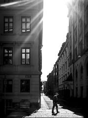 Walking alone (Olderhvit) Tags: street blackandwhite lumix photography gothenburg streetphotography streetphoto goteborg 2015 streetpics gatufoto östrahamngatan framingthestreet olderhvit dmcgx7