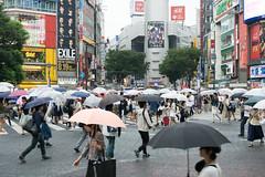 Tokyo VI (bold.) Tags: life street city light summer vacation cloud holiday building rain japan umbrella lights tokyo movement asia crossing sony sigma advertisement commercial dust alpha 6000 mega shibuja
