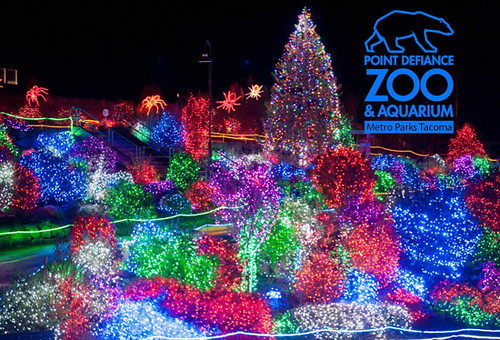 Houston Zoo Lights Har Com