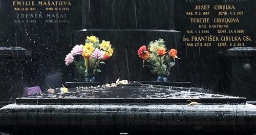 Grabplatte im Regen