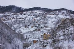 Trabzon / Turkey (gitbigor com) Tags: travel wanderlust seyahat gezi trip backpack
