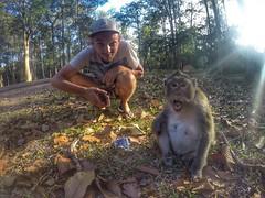 Shock effect (Alexandr Tikki) Tags: cambodia monkey selfie iphone gopro wow amazing fun smile nature angkor fantastic travel leveltravel