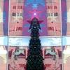 christmas in the city fx (msdonnalee) Tags: mirrorfx christmastree macys star windowreflection hss gimp corel paintshop