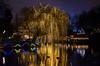 Copenhagen Xmas (José Hidalgo) Tags: copenhague copenhagen dinamarca danemark navidad xmas christmas nocturna luces árbol lights tree tivoli