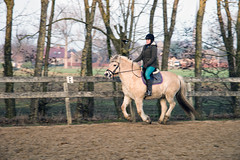 Lisa taking a first ride on Gidde (NL - Follows back but read profile first!) Tags: gidde meikevantilburg lisavantilburg horse fjord gallop gemeenteoss lith paard pony edwinvantilburg fotograaf fotografie sony beercan 28135 a99 riding equine