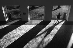 Shadows, Whitworth Art Gallery, Manchester (nickcoates74) Tags: iphone iphone5s manchester whitworthartgallery whitworthgallery windows shadows blackandwhite bw