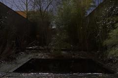 Sleepless at Night (nokkie1) Tags: eindhoven holland night backyard movement moonlight moon pond lines depth