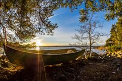 Sunset (Jens Haggren) Tags: olympus samyang75mm sunset sun sea water trees boat light landscape nature view värmdö sweden jenshaggren