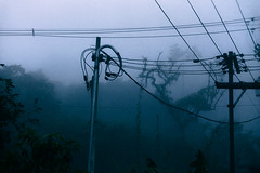 I am but a pale shadow… (AtEternitysGate) Tags: fog forest forgotten melancholy expressive empty decay memory memories lonely street mystery alone sadness anxiety suspense obscure abandoned taciturn rain dark woodland nostalgia horror sorrow countryside mist solitude gloomy tree