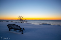 Bench (E. Aguedo) Tags: winter snow bench ocean tree twilight sunrise sky long exposure water light beutiful rocky park warwick ngc new england rhode island