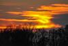 Burning sky (scheuringv) Tags: sun sunlight sky flames fire red yellow glow orange trees clouds sunset burning winter nature outdoor canon eos 1100d sonne sonnenuntergang gelb rot feuer flammen licht abendrot glühen himmel wolken natur landschaft landscape