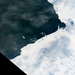 Cracking an Antarctic Glacier (sjrankin) Tags: 15february2017 edited nasa landsat8 pineisland pineislandglacier southernocean antarctica ocean clouds icebergs iceberg cracks pineislandoli2017026lrg