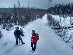 А у нас оставалось одно, идти быстрее по  лесной дороге, чтобы выйти из леса до темноты.