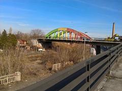 WP_20170222_13_44_16_Rich (vale 83) Tags: colorful bridge belgrade serbia friends flickrcolour wpphoto wearejuxt autofocus photopedia coloursplosion colourartaward beautifulexpression yourbestoftoday