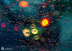 Gotas de agua (Jubaro68) Tags: exposicion lluvia jubaro jerez agua gotas