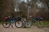 Bikes, mud, microadventure (Brian McGloin) Tags: bikes brianmcgloin butlertrail dan secretbeach surly mud photographer photography photojournalist rain
