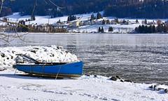En attente du printemps (Diegojack) Tags: lechenit vaud suisse valléedejoux hiver glace lacdejoux neige lerocheray