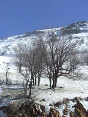 חרמון 013 (Ravid Bazak) Tags: חרמון