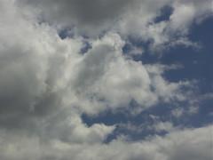 Equivalent 1 (Zelda Wynn) Tags: inspiredbyalfredstieglitz equivalent cloudscape artgallerynsw newzealand weather auckland