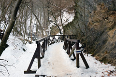 Hiking path in the valley (Majorimi) Tags: canon eos 70d digital color colorful nice hungary winter cold snow white nature pilis hills valley montains bridge tree forest ice rock wall