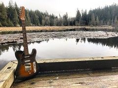 Waiting for Spring (Pennan_Brae) Tags: sixstring 6string guitarphotography musicphotography fendertelecaster fendertele fenderguitar guitar vancouverbc vancity yvr vancouver beaverlake stanleypark electricguitar telecaster fender