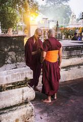 Ahora ya eres uno de los nuestros (Nebelkuss) Tags: india bihar bodhgaia bodhgaya budista budismo buddhism buddhist monje monk mahabodhi fujixt1 fujinonxf23f14 asia