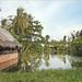 Paysage des rives du Bassac (Long Xuyen, Vietnam)