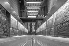 Davy Sleijster Arnhem -08 (Davy Sleijster) Tags: lines station metal stairs wtc trap lijnen gelderland