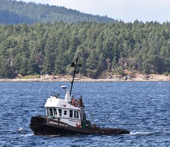 Conuma master - tug boat (D70) Tags: canada island boat bc galiano columbia master british tug channel trincomali conuma