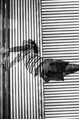 Letting go (jesenovecandrej_photo) Tags: street blackandwhite abstract motion art texture monochrome lines collage kid child force streetphotography textures gravity hanging letgo holdingon lettinggo