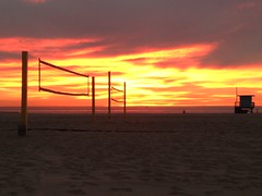 Sunset VB Nets (1)