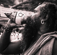 Devotee sounding shell - crop (pseudohippe) Tags: blackandwhite india festivals documentary devotees rituals nashik kumbhmela godavari blowingconch
