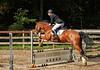 Doorn (Steenvoorde Leen - 2.7 ml views) Tags: doorn manege manegedentoom arreche springen paarden jumping horses hindernis fench halloween 2015 happyhalloween horse pferd reiten paard pferde haloween utrechtseheuvelrug cheval