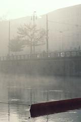 BARRIER-5.jpg (Adamo M. Moses) Tags: milan fog moody sony atmosphere nebbia atmosfera myst foschia diffusedlight a6000