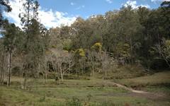 Lot 183 Stockyard Creek Road, Paynes Crossing NSW