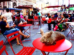 Dr. Takeshi Yamada and Seara (Coney Island sea rabbit) at the Times Square in Manhattan, New York on July 2, 2016. NYC.  20160702Sat DSCN7251=-3060C. f (searabbits23) Tags: searabbit seara takeshiyamada 山田武司 taxidermy roguetaxidermy mart strange cryptozoology uma ufo esp curiosities oddities globalwarming dragon mermaid unicorn art artist alchemy entertainer performer famous sexy playboy bikini fashion vogue goth gothic vampire steampunk victorian barrackobama billclinton billgates sideshow freakshow star king pop god angel celebrity genius amc immortalized tv immortalizer japanese asian mardigras tophat google yahoo bing aol cnn coneyisland brooklyn newyork leonardodavinci damienhirst jeffkoons takashimurakami vangogh pablopicasso salvadordali waltdisney donaldtrump hillaryclinton
