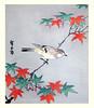 Japanese maple and tit? (Japanese Flower and Bird Art) Tags: flower maple acer palmatum aceraceae bird tit parus paridae hiroshige utagawa ukiyo woodblock print japan japanese art readercollection