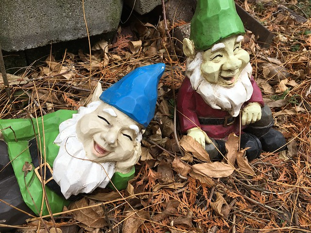 I was Told There Would Be No Gnomes