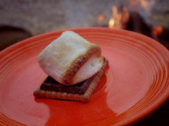 campfire 'n s'mores -monday afternoon (EllenJo) Tags: pentaxqs1 campfire smores winterinarizona verdevalley outdoors december12 2016 ellenjo ellenjoroberts fiestaware marshmallow